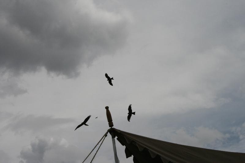 igf-vi-nairobi-2011-028